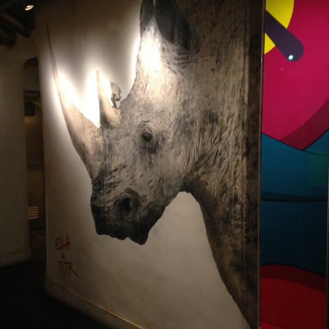 Bibo Rhino