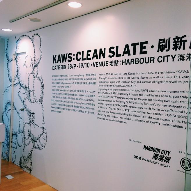 Kaws Clean Slate